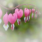 Broken hearts by Patrick Reinquin