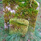"""a rolling gravestone does gather moss"" by lutontown"