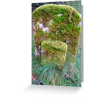 """a rolling gravestone does gather moss"" Greeting Card"