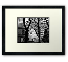 Hidden Harmony Framed Print