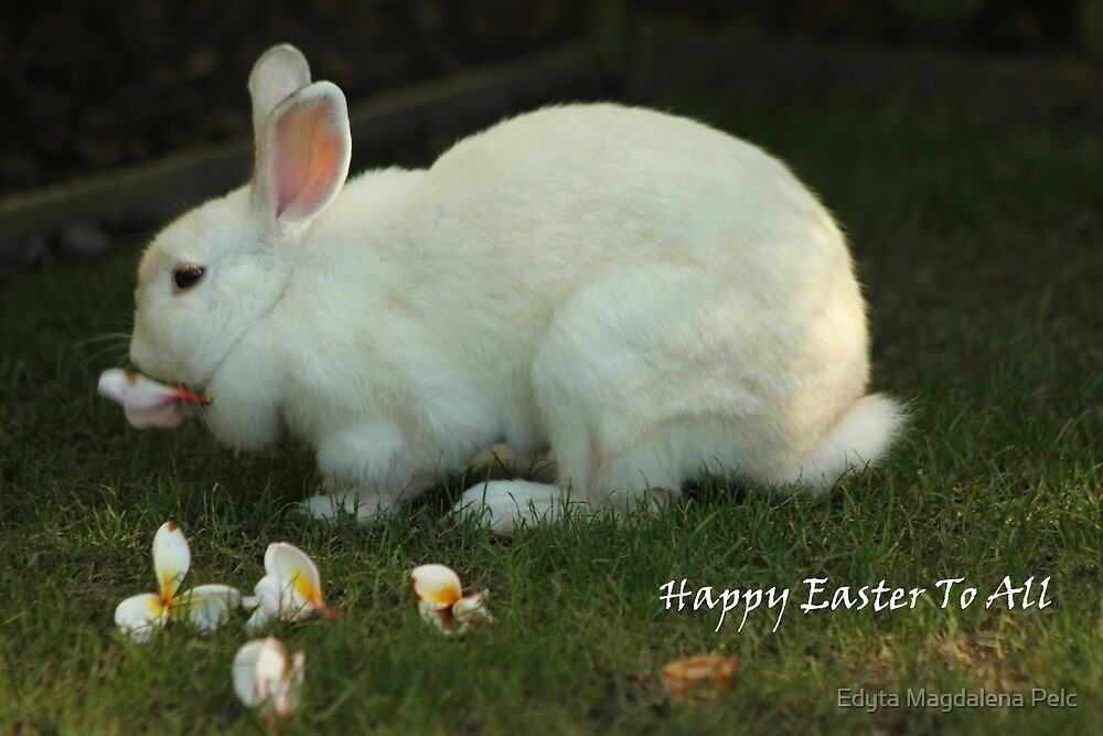 Happy Easter by Edyta Magdalena Pelc