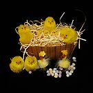 Easter Collection by AnnDixon