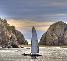 Cabo San Lucas by Gillian  Ford