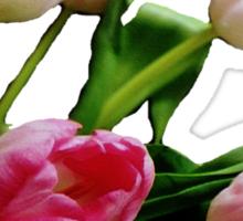 Tulip Tee Sticker