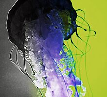Dance of the Jellyfish by Anello Originals