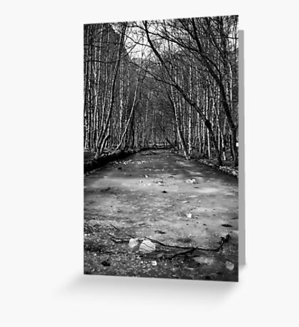 Frozen River - B&W Greeting Card