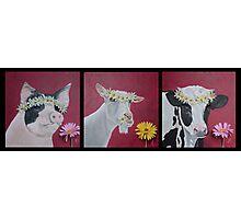 Flower Girls Photographic Print