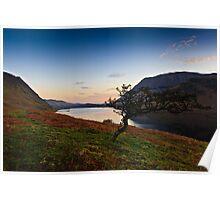 Sunrise Crummock Water, Cumbria. UK Poster