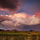 Colour of Thunder by Rob  Southey