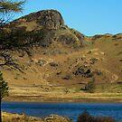 Blea Tarn towards Langdale Pikes by John Hare