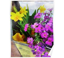 Window Box on a Windy Day Poster