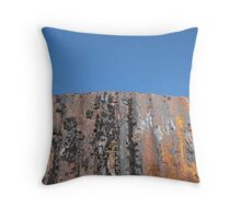 Corrugated Fence 1 Throw Pillow