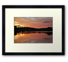 Golden Pink Framed Print