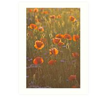 Golden moment . Psychodelic opium poppy delusion landscape. by Brown Sugar. Yeah !!! Views (336)  favorited by (1) Thank you very much !!! Waaaaws  !!! Art Print
