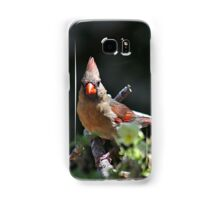 Female northern cardinal perched on a branch Samsung Galaxy Case/Skin