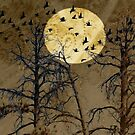 Flight By Moonlight by CarolM