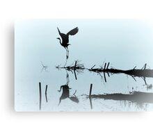 The Aviator... Canvas Print