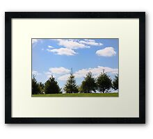 Picture Perfect Sky Framed Print