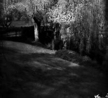 The soul of the Willow tree by Lissywitch