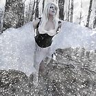 The Blizzard Dance by DarthSpanky