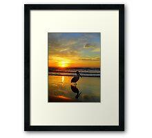 Pelican at Sunrise, Manly Beach, Sydney, NSW, Australia Framed Print