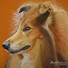 Rough Collie  by Hilary Robinson