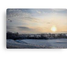 Snowy scene. Metal Print