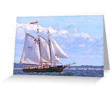 The fun ship Mary E Greeting Card