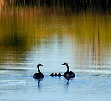 Family Group by Robert  Mackert