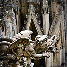 Do Gargoyles Dream of Stone Sheep? by dansLesprit