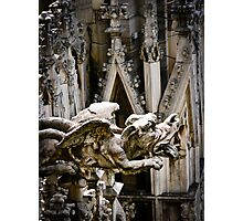 Do Gargoyles Dream of Stone Sheep? Photographic Print