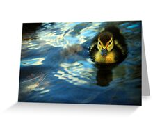 Little Duckie Greeting Card