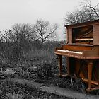 Piano by Laughing Bones