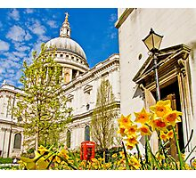 Spring At St Paul`s - London Photographic Print