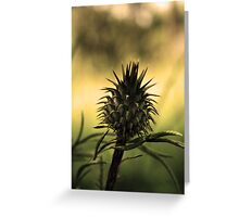 Thorn Greeting Card