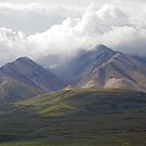 Moods Of Denali III by Gary L   Suddath
