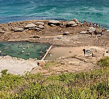 Wollongong Ladies Baths by steen