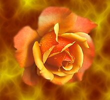 Clouds verses yellow rose by debra123