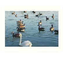 A time of togetherness at Park-Lawn, Toronto Art Print