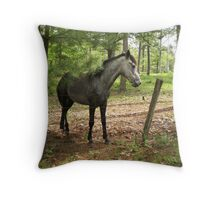 Warlock's Shimmering Steel II Throw Pillow