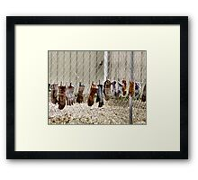 Gloves Hung Out To Dry Framed Print