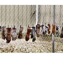 Gloves Hung Out To Dry Photographic Print