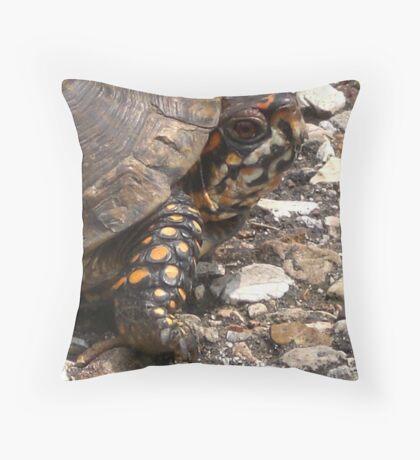 Three-Toed Ornate Box Turtle I Throw Pillow