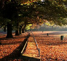 Early autumn sunrise by MikeO