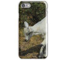 White Kid Goat Walking iPhone Case/Skin