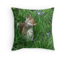 Springtime squirrel Throw Pillow