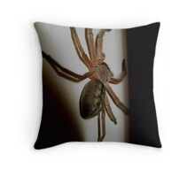 Seeking Shelter- Huntsman Spider Rest Indoors Throw Pillow