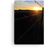 Along the Country Fence Canvas Print