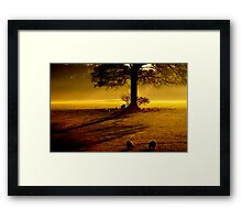 """MORNING GLORY"" Framed Print"