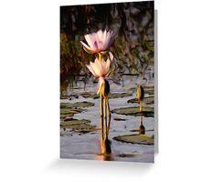 Water Lilies - Emu Park Greeting Card
